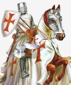 Medieval Horses